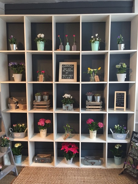 Sweetpea-shop-Display.jpg