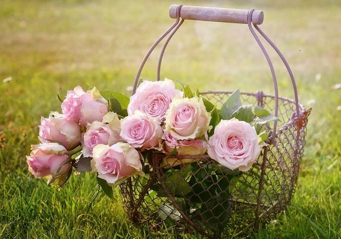 roses-Gift.jpg