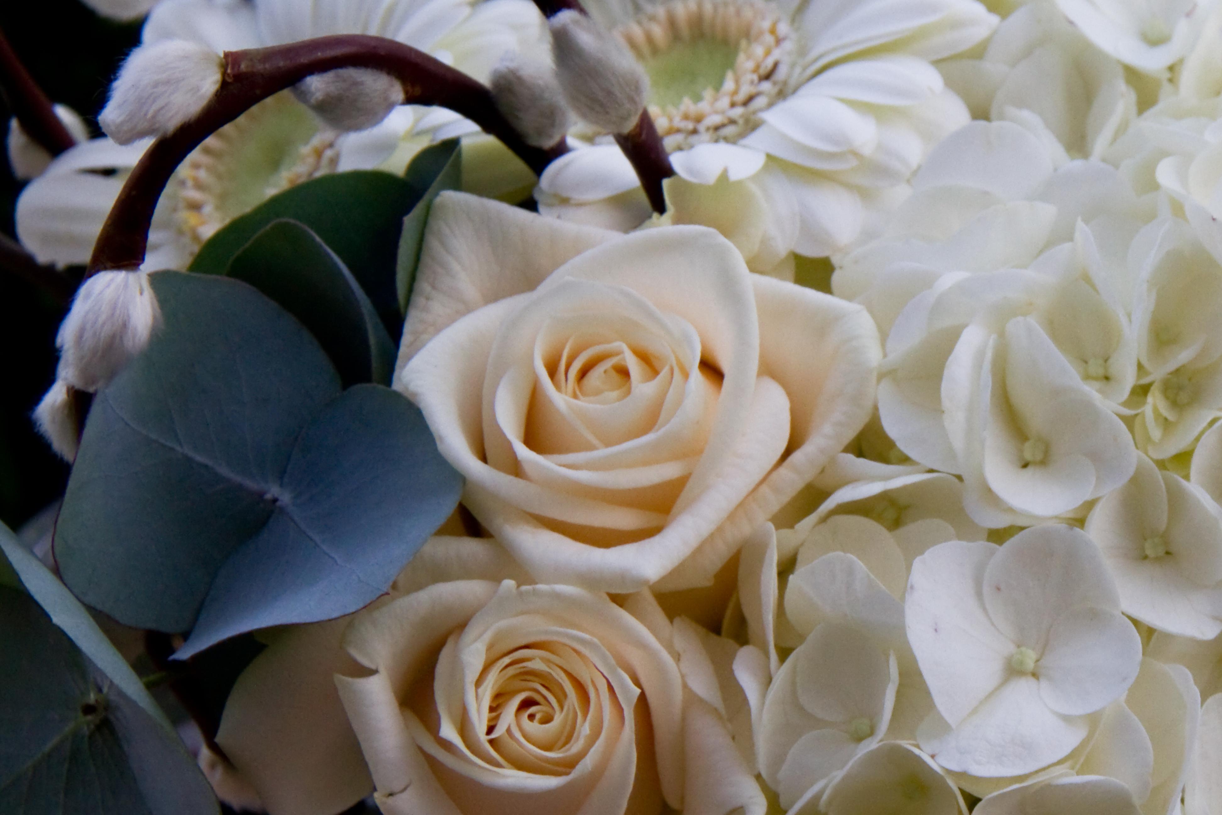 Wedding Flowers Hydrangeas Roses Gerberas