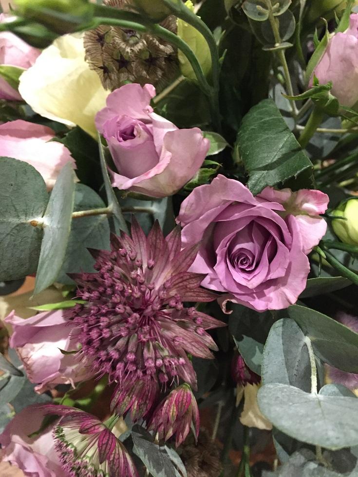 Lilac-Rose.jpg