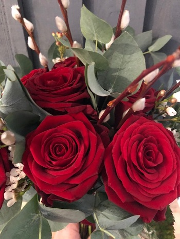 ValentinesRoses1.jpg