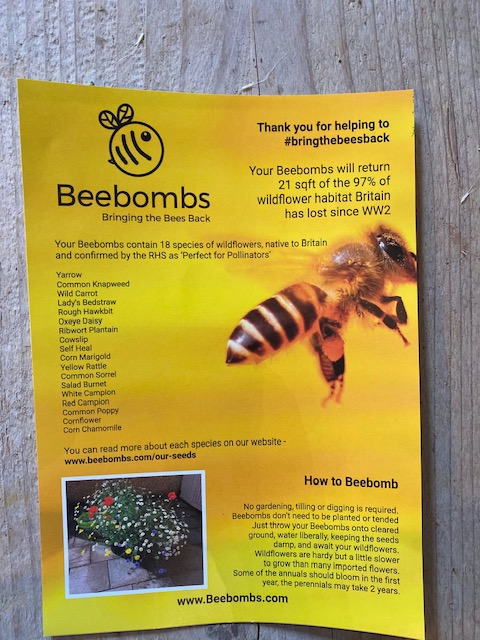 BeeBomb-Info.jpg
