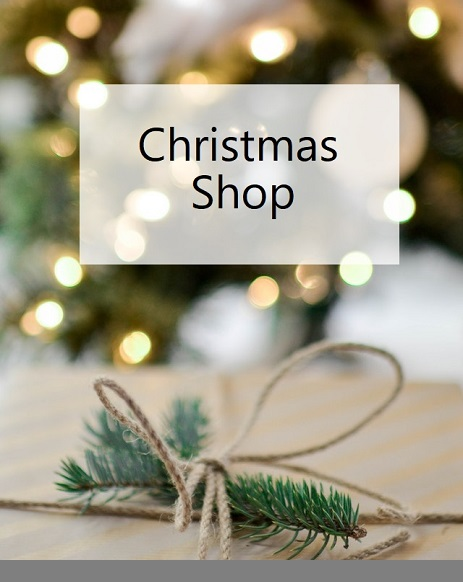 ChristmasShopCat-2.jpg