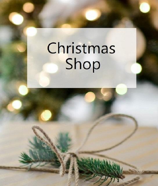 ChristmasShopCat-4.jpg