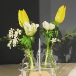 White and yellow flowers in milk bottles